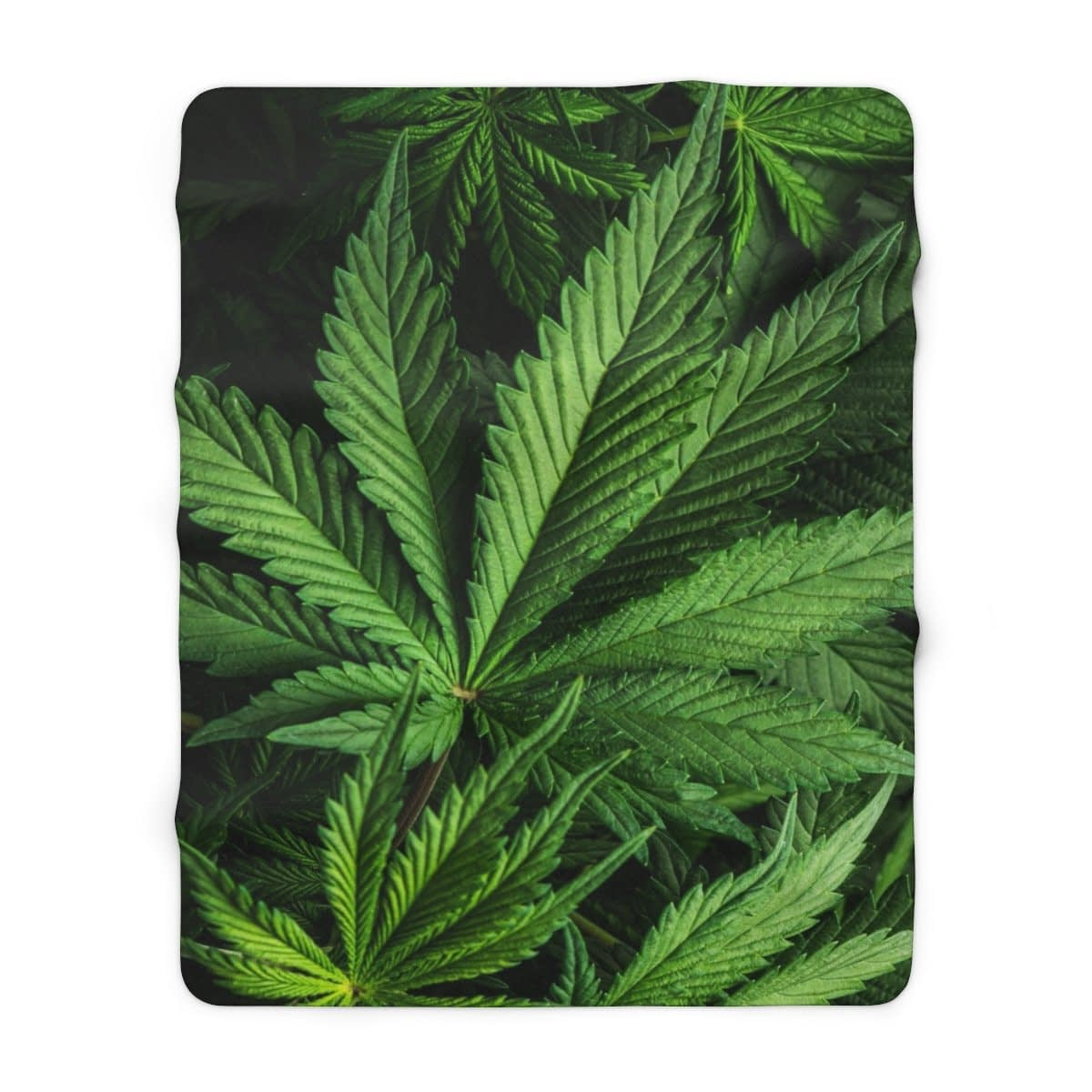 Cannabis Sherpa Fleece Blanket