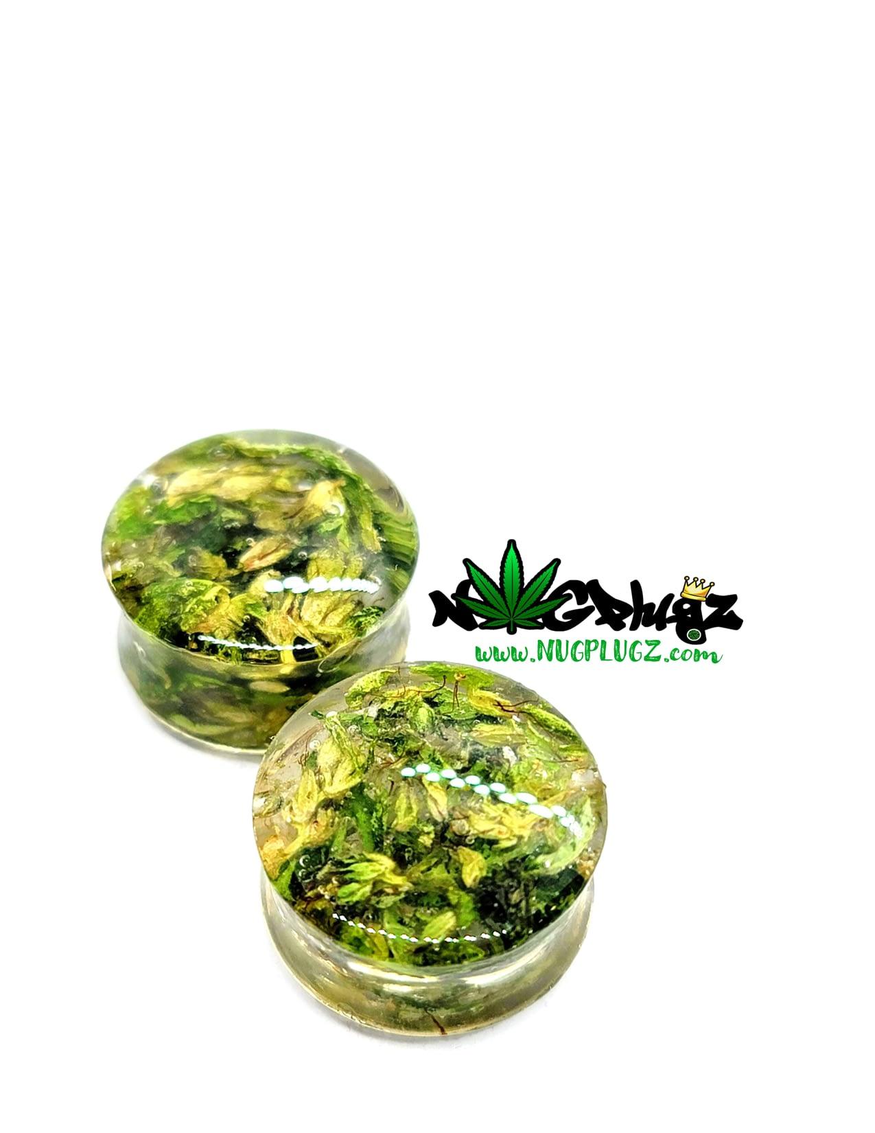 Nug Plugz – Real Cannabis Ear Plugs – Double Flare – Clear